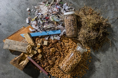 A number of different examples of biomass feedstock.