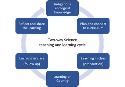 The two-way science learning cycle: Indigenous ecological knowledge goes to plan and connect to curriculum goes to learning in class (preparation) goes to learning on-country goes to learning in class (follow up) goes to reflect and share the learning.
