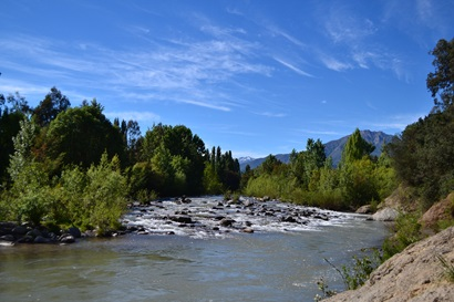 A flowing blue river surrounded by lush trees and hills. Rapel Basin, Chile. Image by  Gabriella Bennison, CSIRO Chile