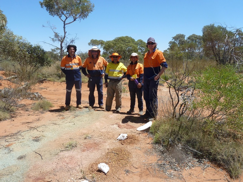 Five men in hi-vis workwear stading grouped in outback landscape