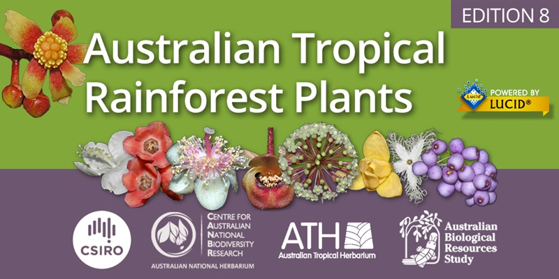 A designed image with tropical flowers in a line in the middle with 'Australian Tropical Rainforest Plants' in white text above. Partner logos below.