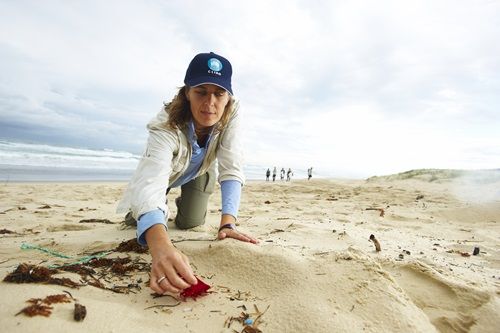 CSIRO researcher Denise Hardesty inspects debris on North Stradbroke Island.