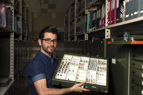 Dr Bryan Lessard holding an insect tray from the Australian National Insect Collection.