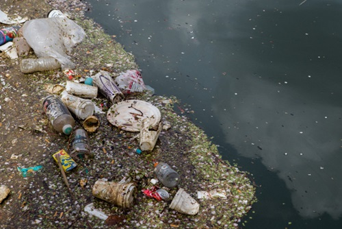 Piles of rubbish floating in a river.