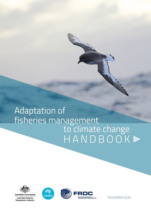 A seabird flies over the ocean. text reads Adaptation of fisheries management to climate change HANDBOOK.