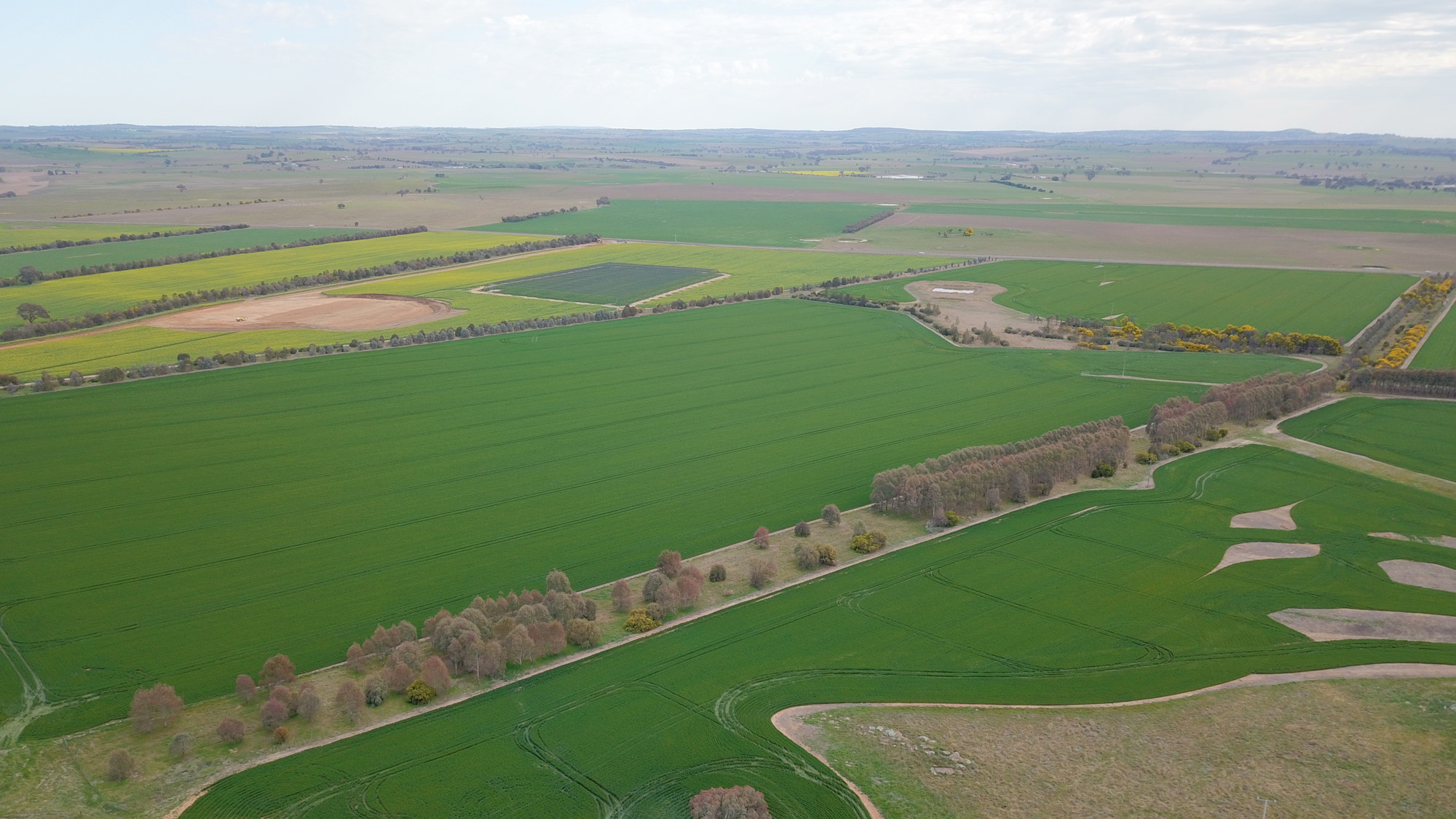 Aerial view of Boorowa Agricultural Research Station
