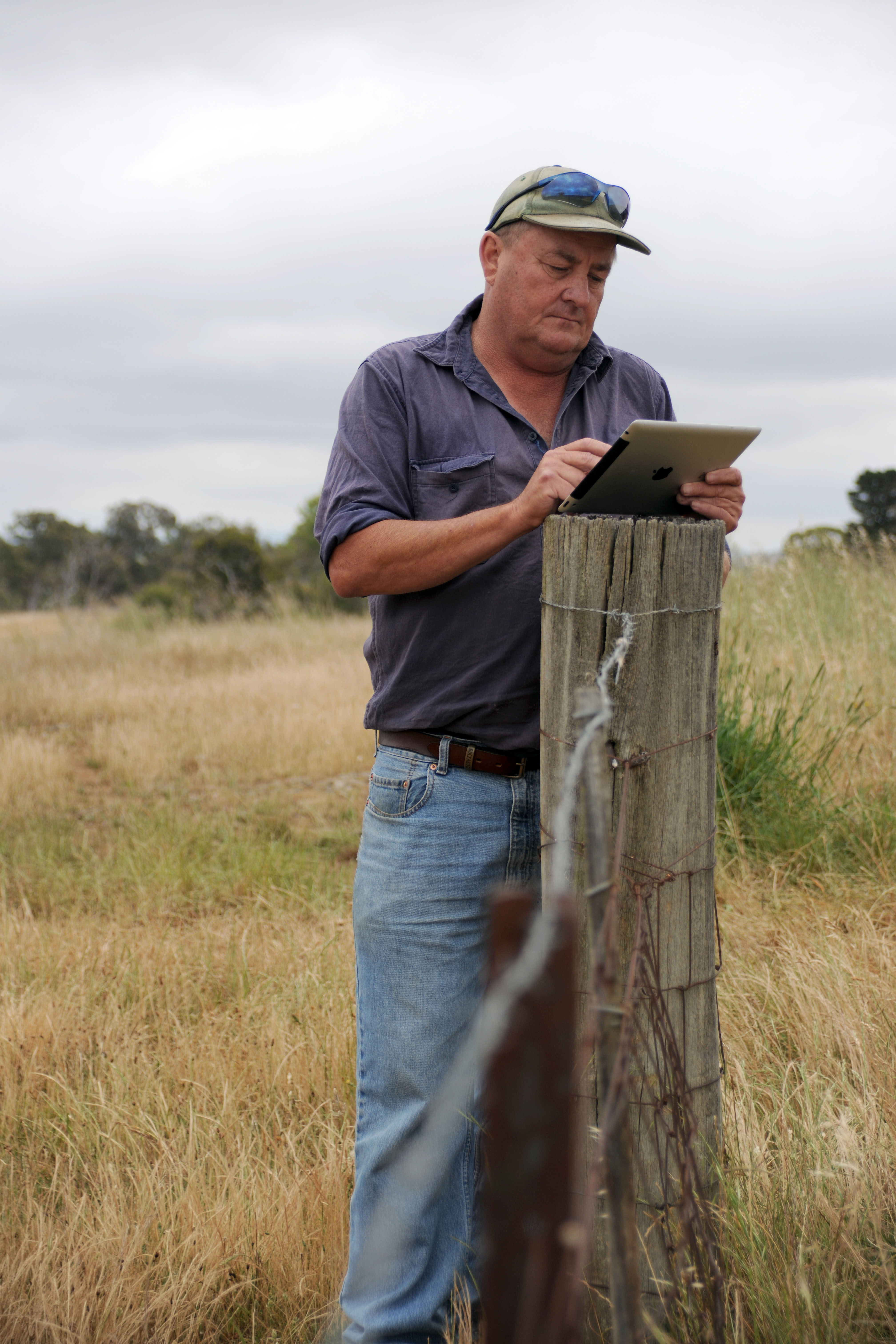 Farmer with ipad