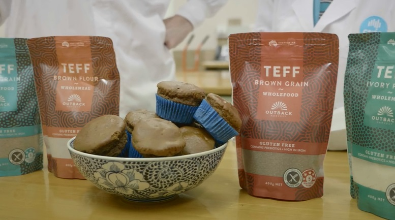 teff, muffins, grain, packs