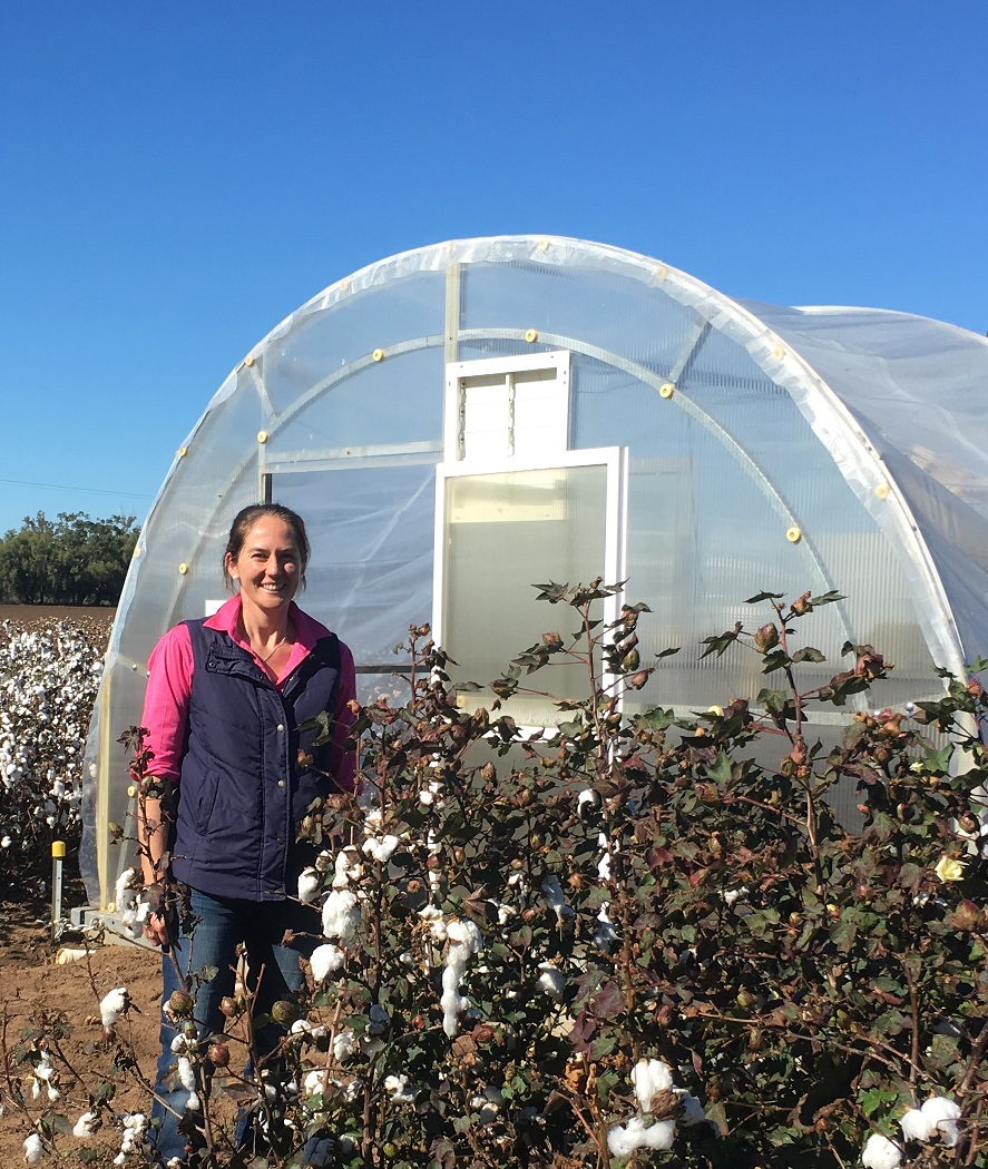 Katie Broughton stands outside a glasshouse surrounded by a field of cotton in Narrabri, northern NSW.