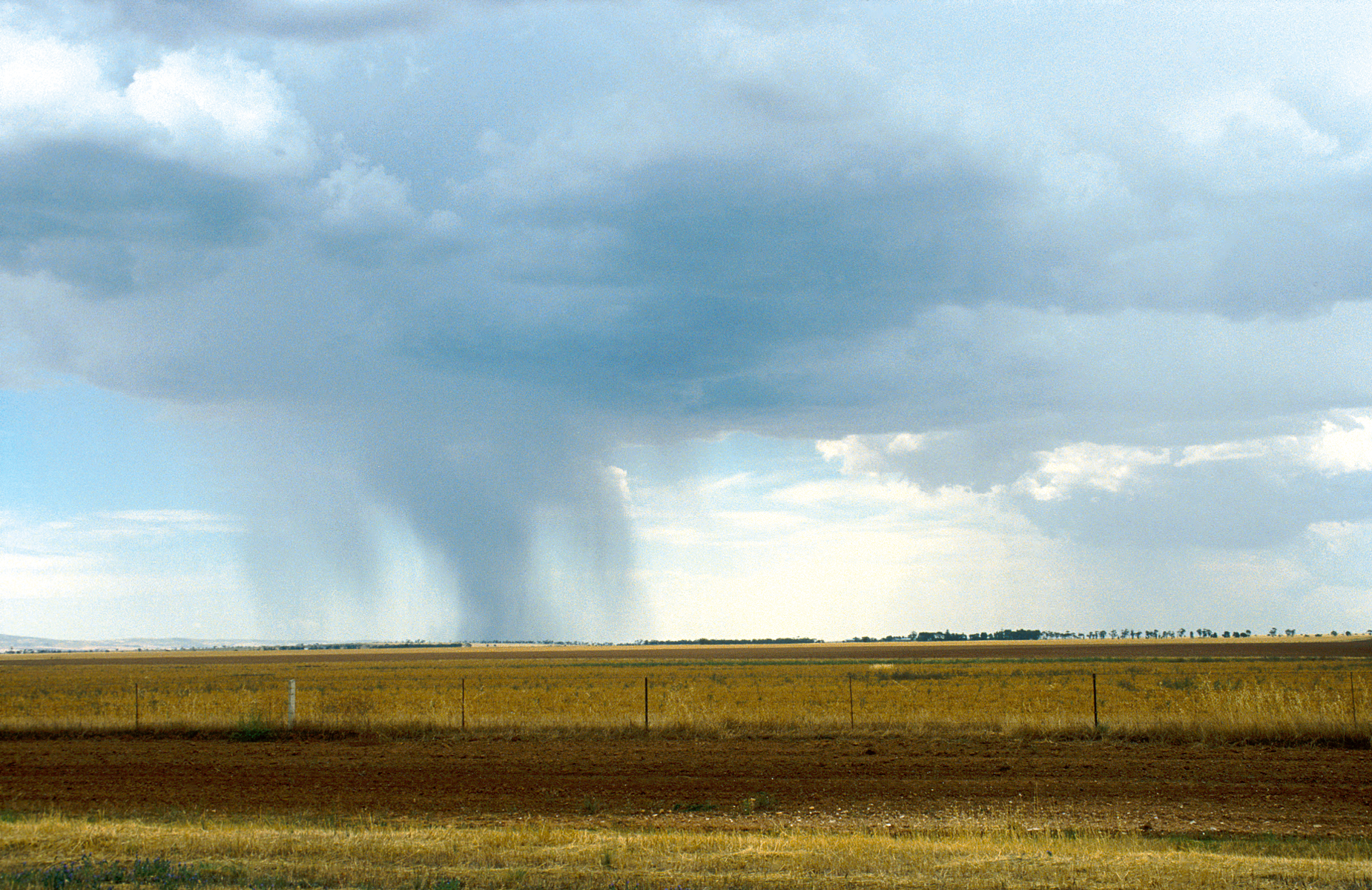 Rainfall over a paddock