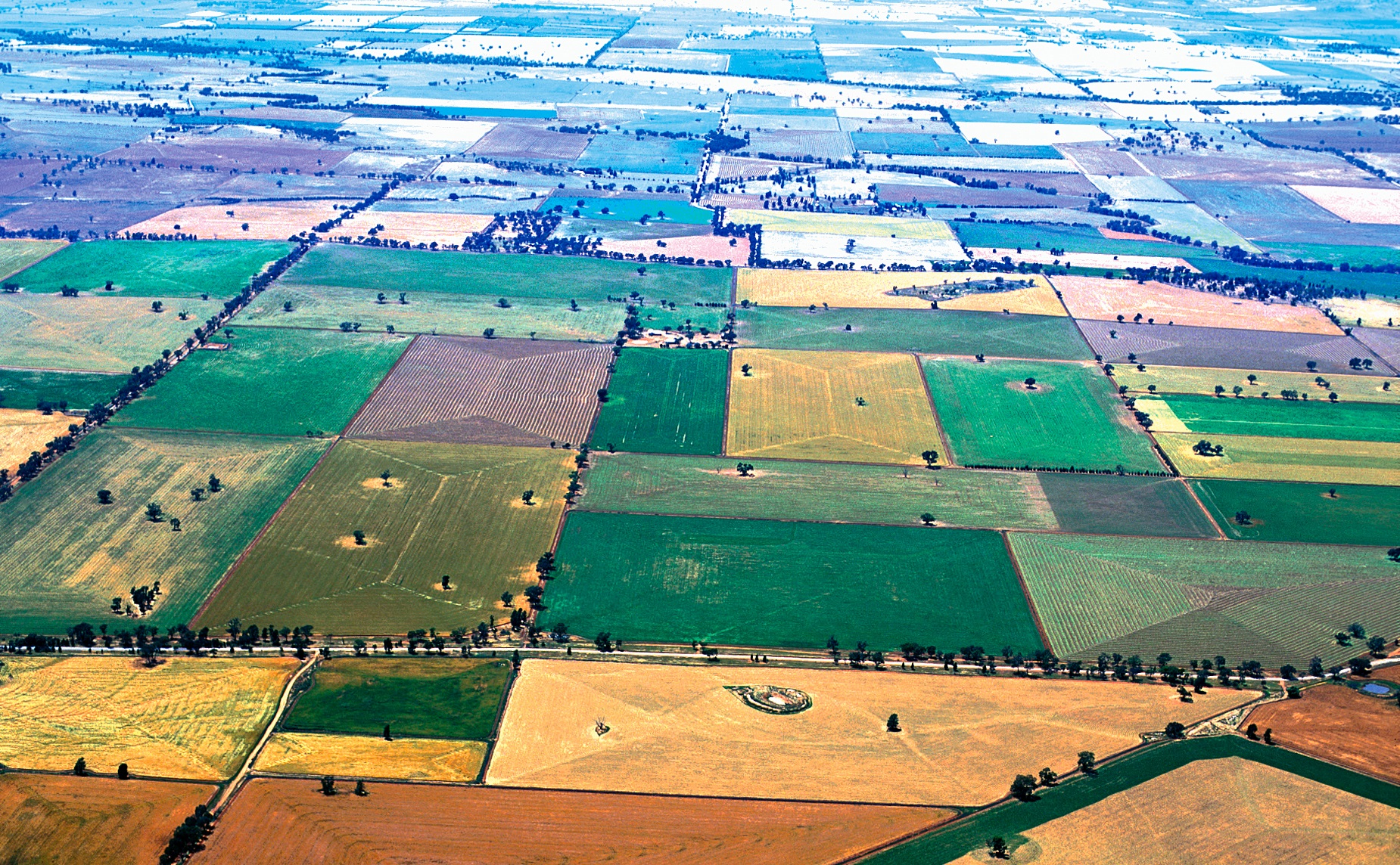 Aerial view of mixed cropping fields.