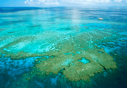 An aerial view of a reef.