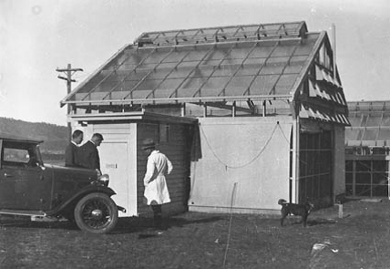 Insect building at Black Mountain, c1933.