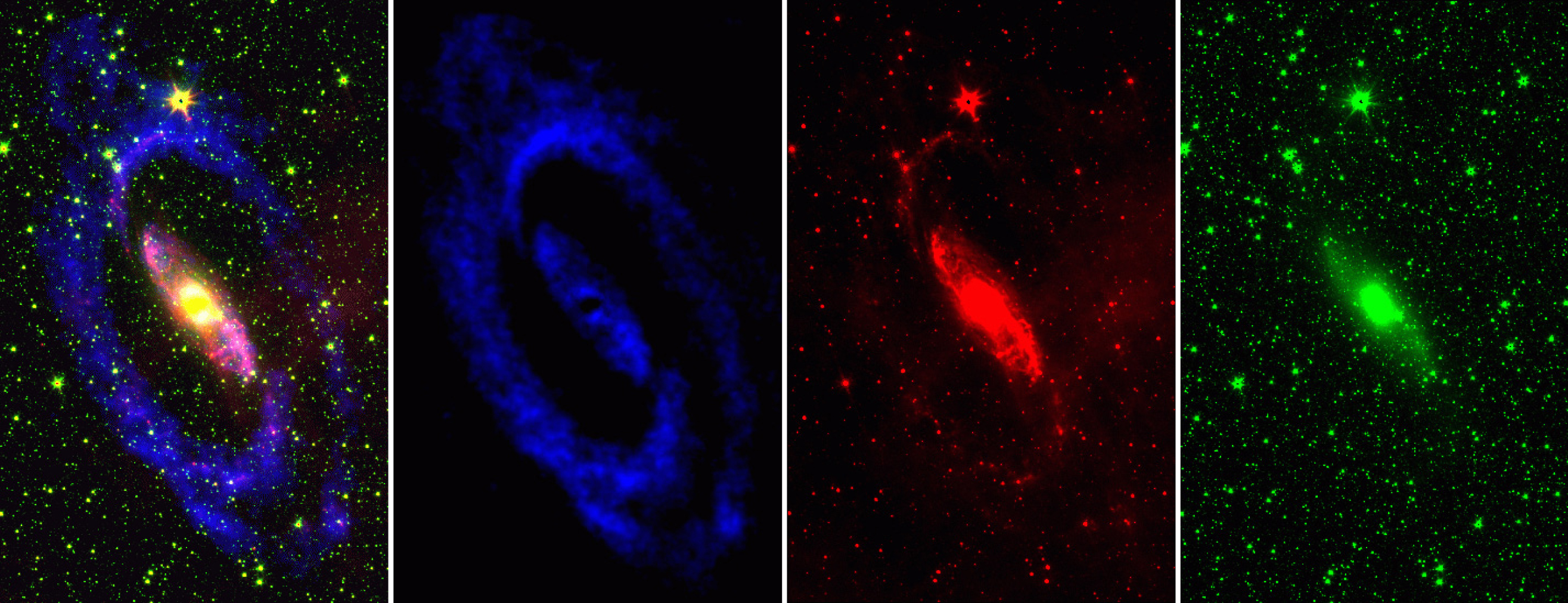 Four images of a spiral galaxy - bright areas on a black background. On the far left is a combined image with a yellow and pink centre, blue spiral arms, surrounded by numerous green dots; to the right of this is a blue swirl; to the right of this is a red swirl; and to the far right is a large, bright green dot in the centre with numerous green dots around it.