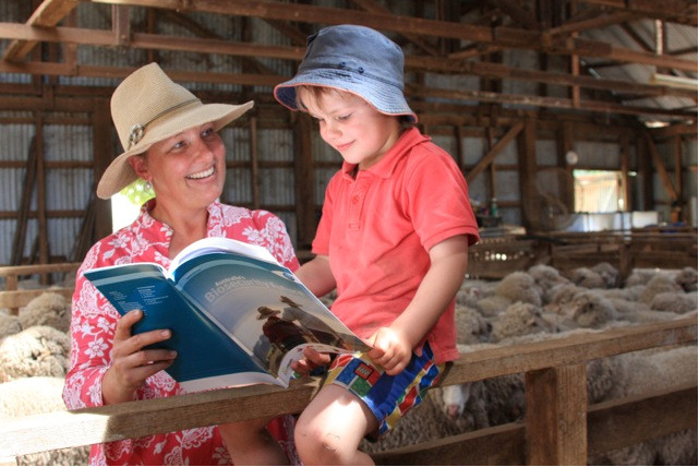 A woman and boy in a shearing shed with many sheep looking at the biosecurity report.