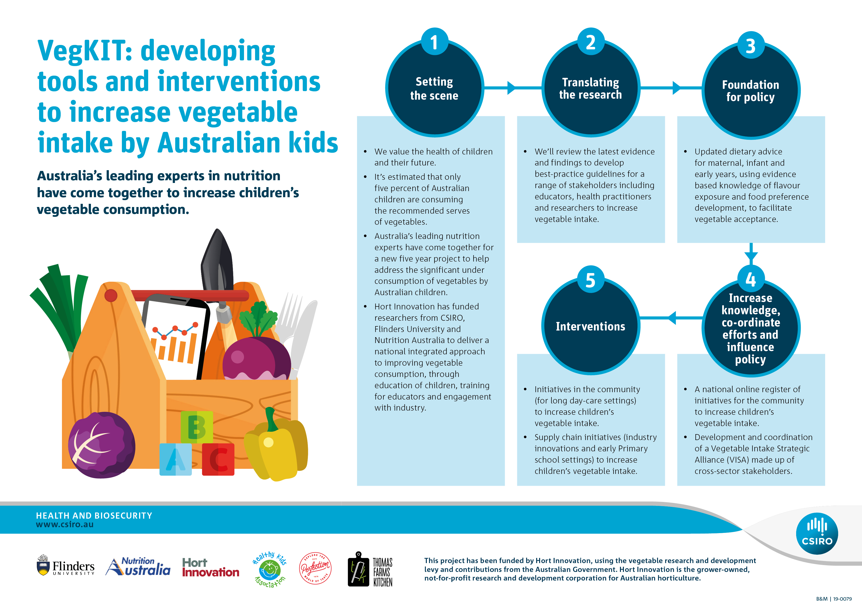 An info-graphic explaining the different activities being undertake as part of the VegKIT project