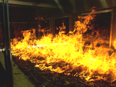 Leaf litter burning in contained facility