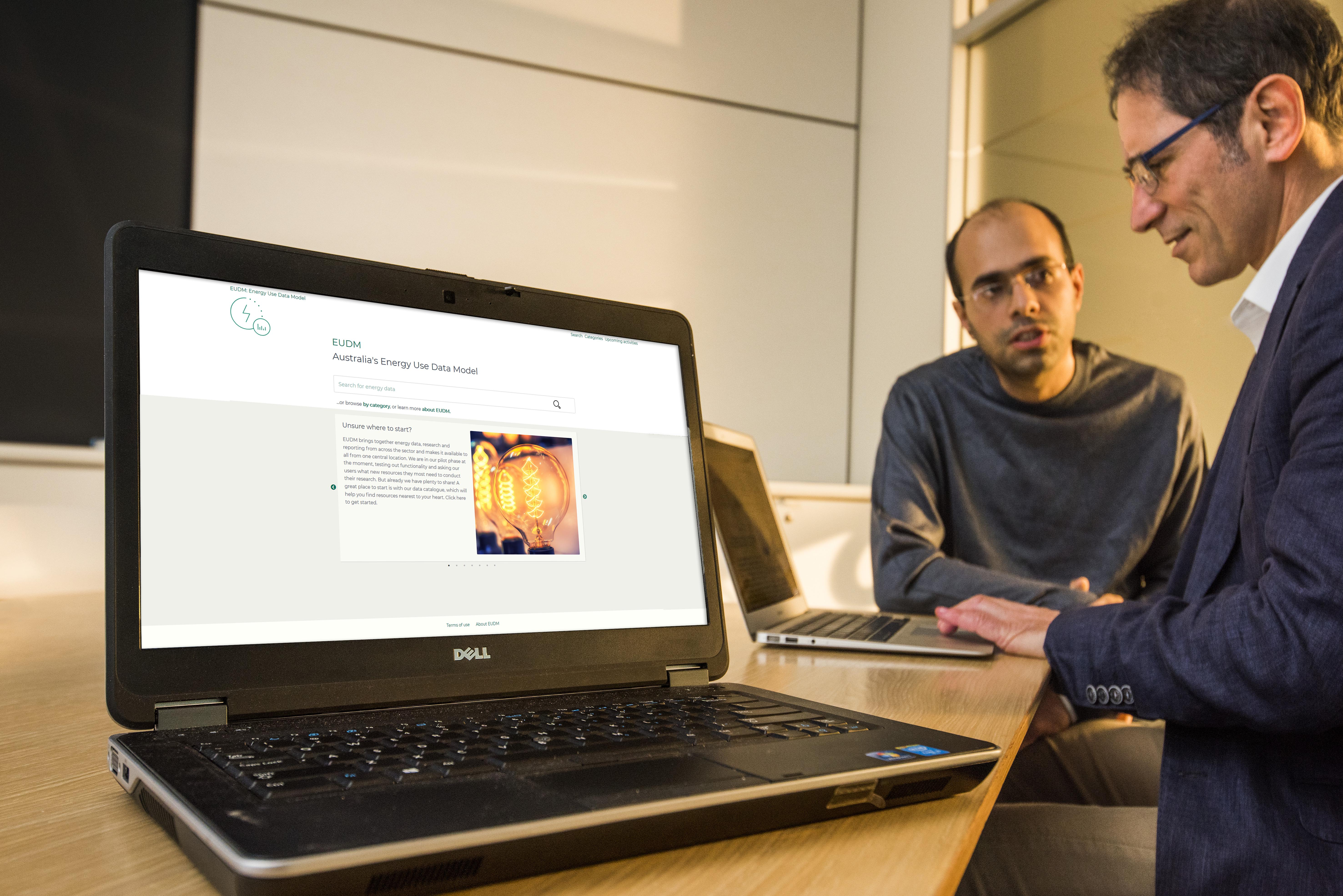 Scientists working on EUDM website on laptop