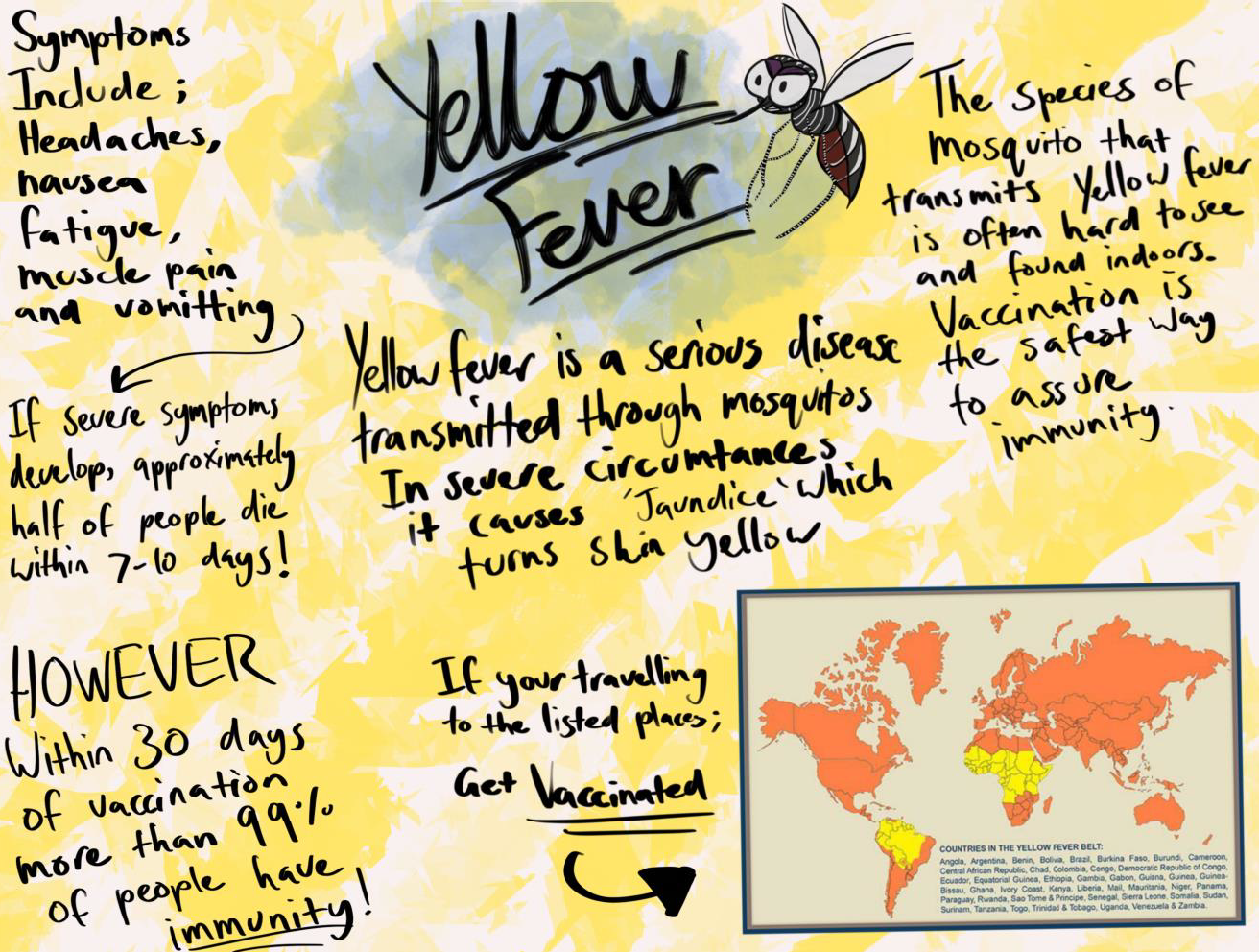 Shows a poster with hand written notes by students about the cause, symptoms and location of yellow fever - also encourages vaccination.