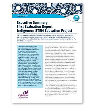 Thumbnail image - download the First Evaluation Report Executive Summary (500kb)