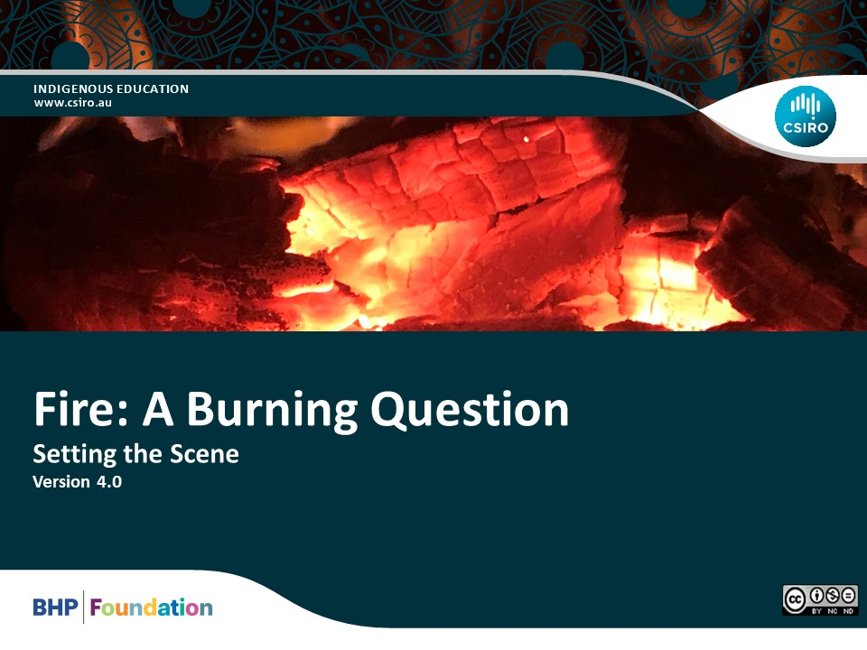 Year 8 – Fire: A Burning Question