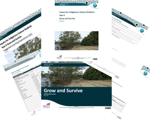 Image of Year 6 Grow and Survive resources