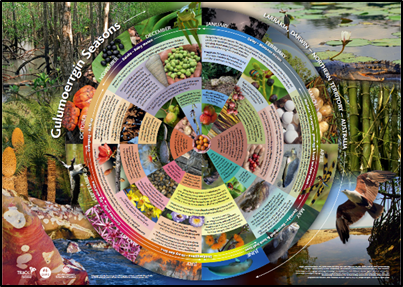 Image of Larrakia Seasonal Calendar - CSIRO