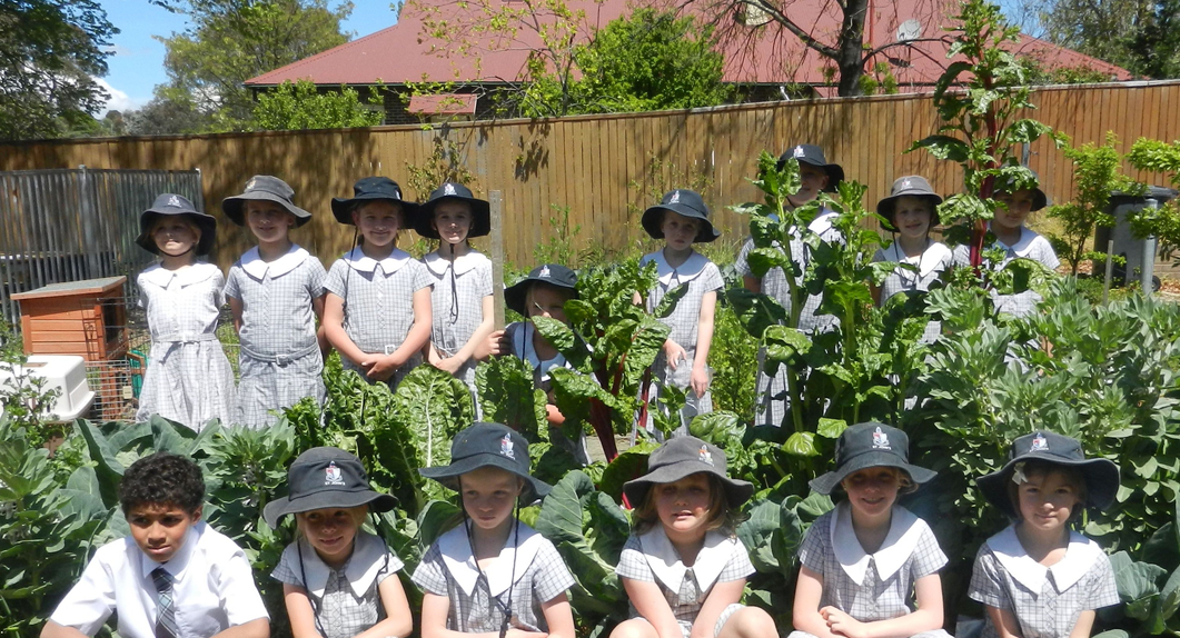 A group of students standing in their shcool vegetable garden