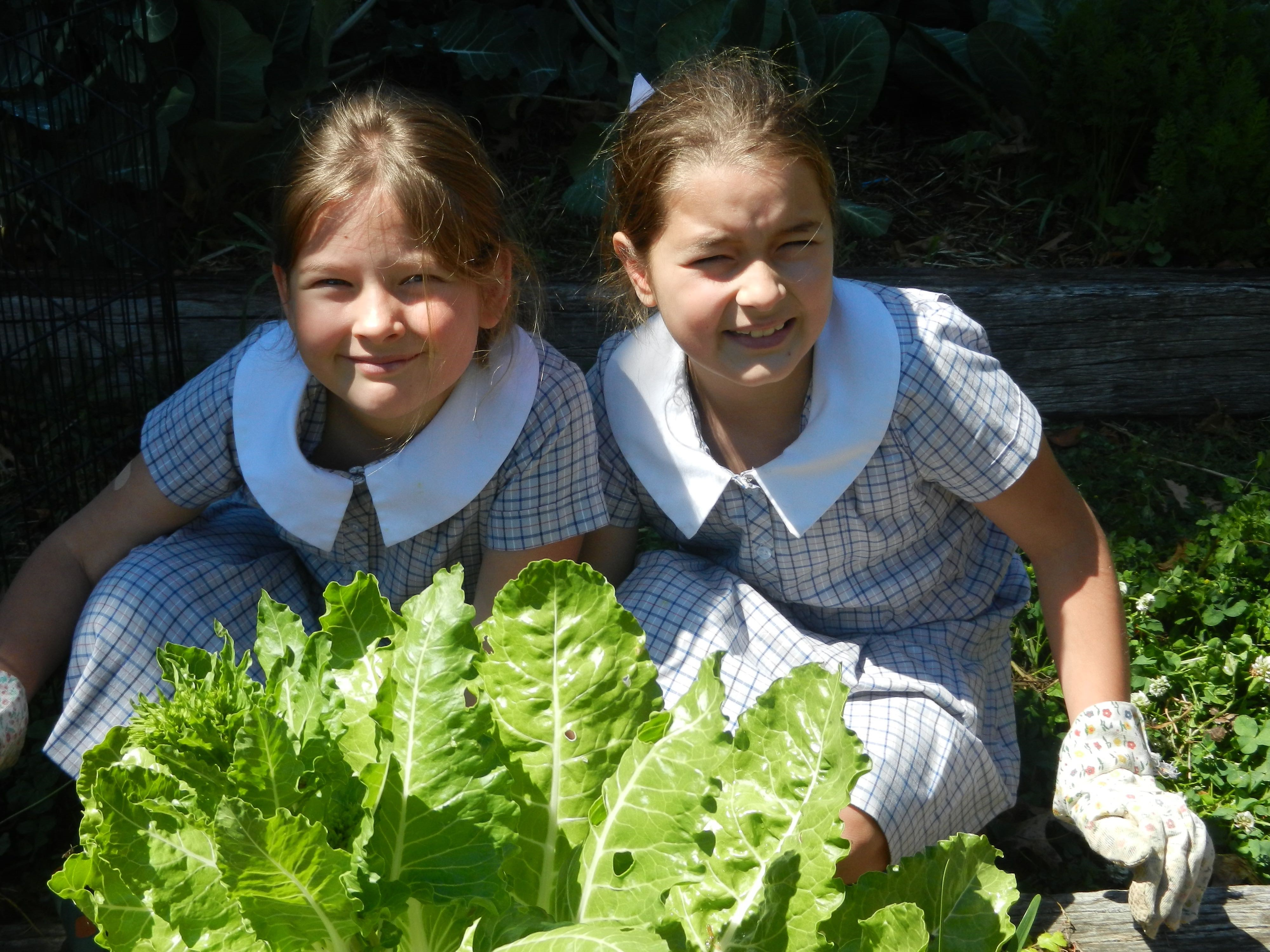 Two young students with some school-grown lettuce