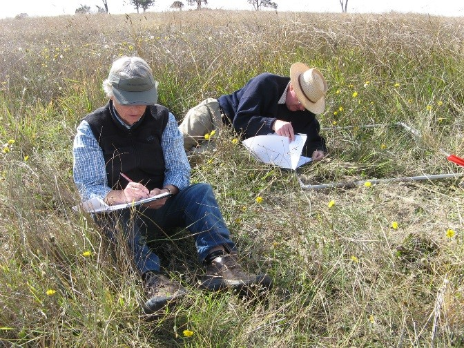 Research work in the field