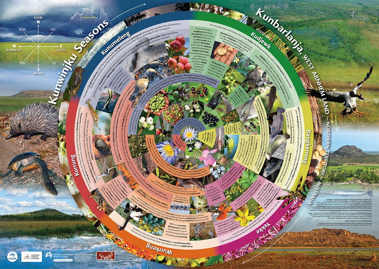 A circular calendar of Kunwinjku seasons showing images of plants, animals and landscapes of western Arnhem Land and language names