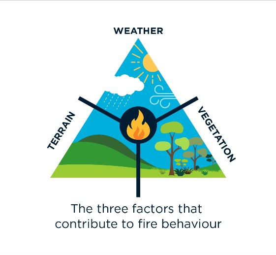 triangle graphic showing weather, vegetation and terrain as three factors that contribute to fire behaviour