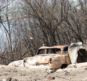 Burnt out car surrounded by burnt bushland following the Kosciuszko fire, 2020.
