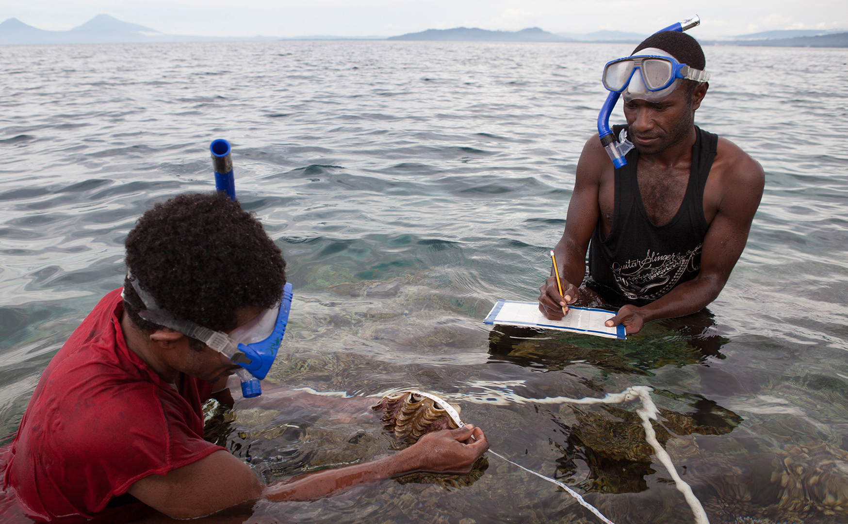 Two men in the ocean off Papua New Guinea measuring the size of marine life and recording findings