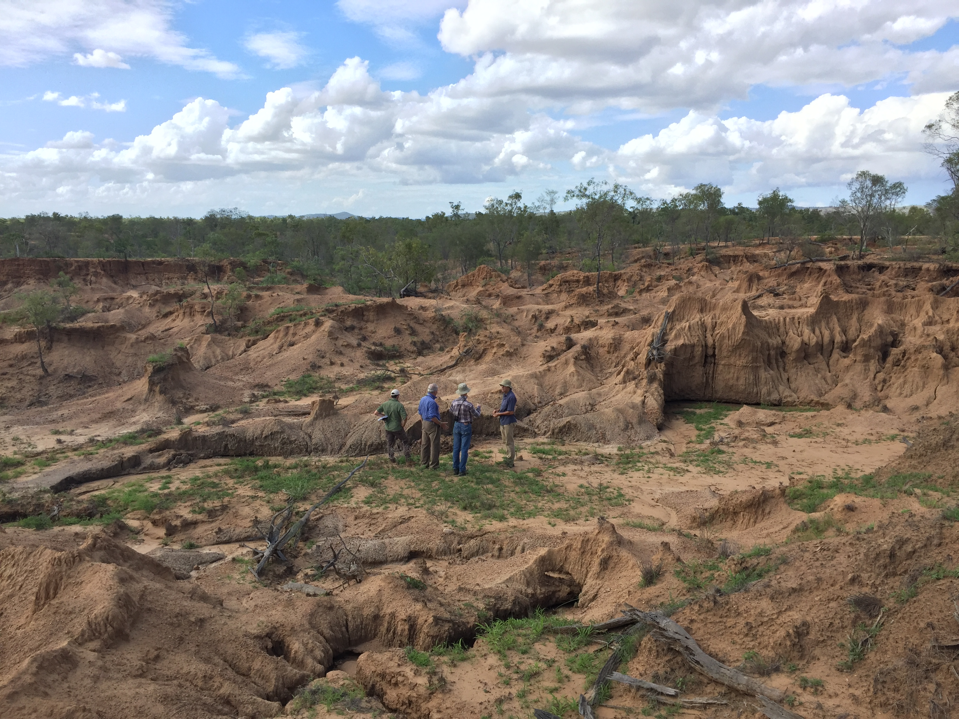 Four CSIRO researchers standing in an eroded gully.