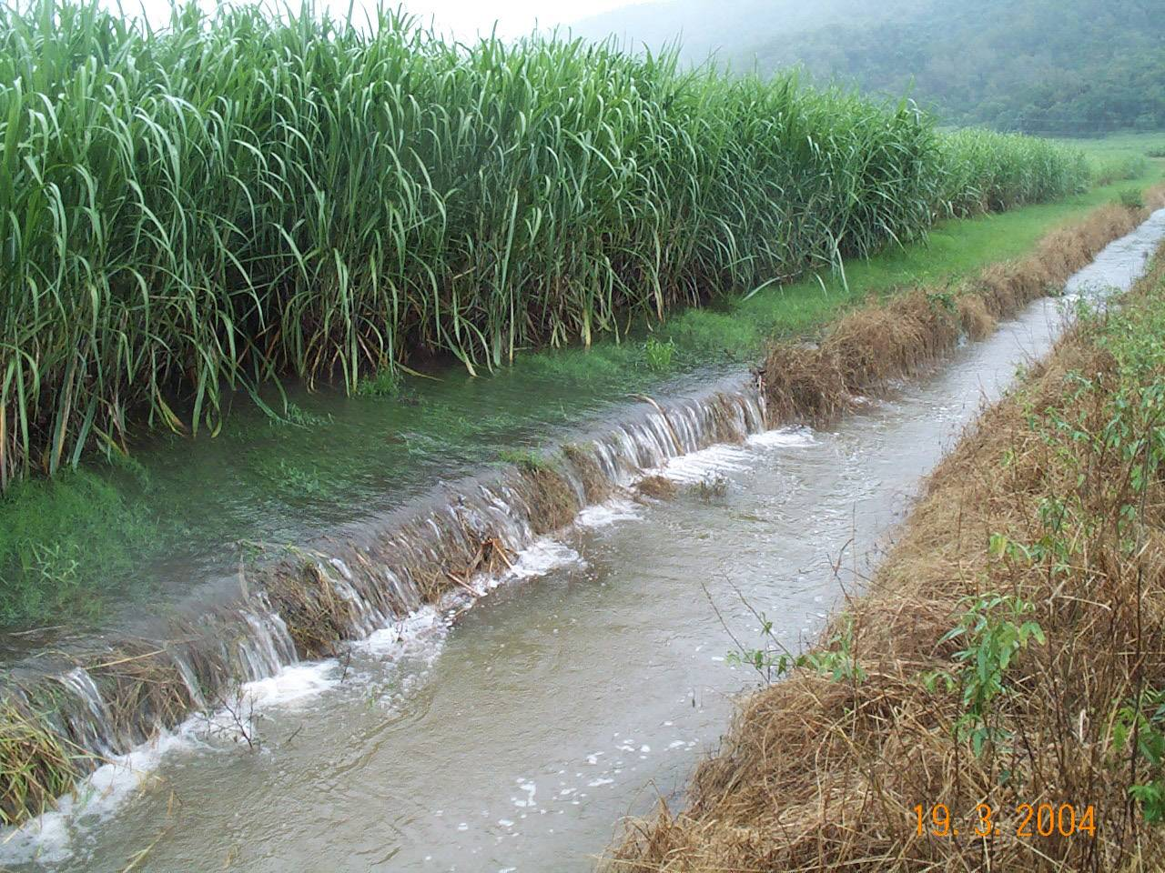 Water runoff from sugar cane fields.