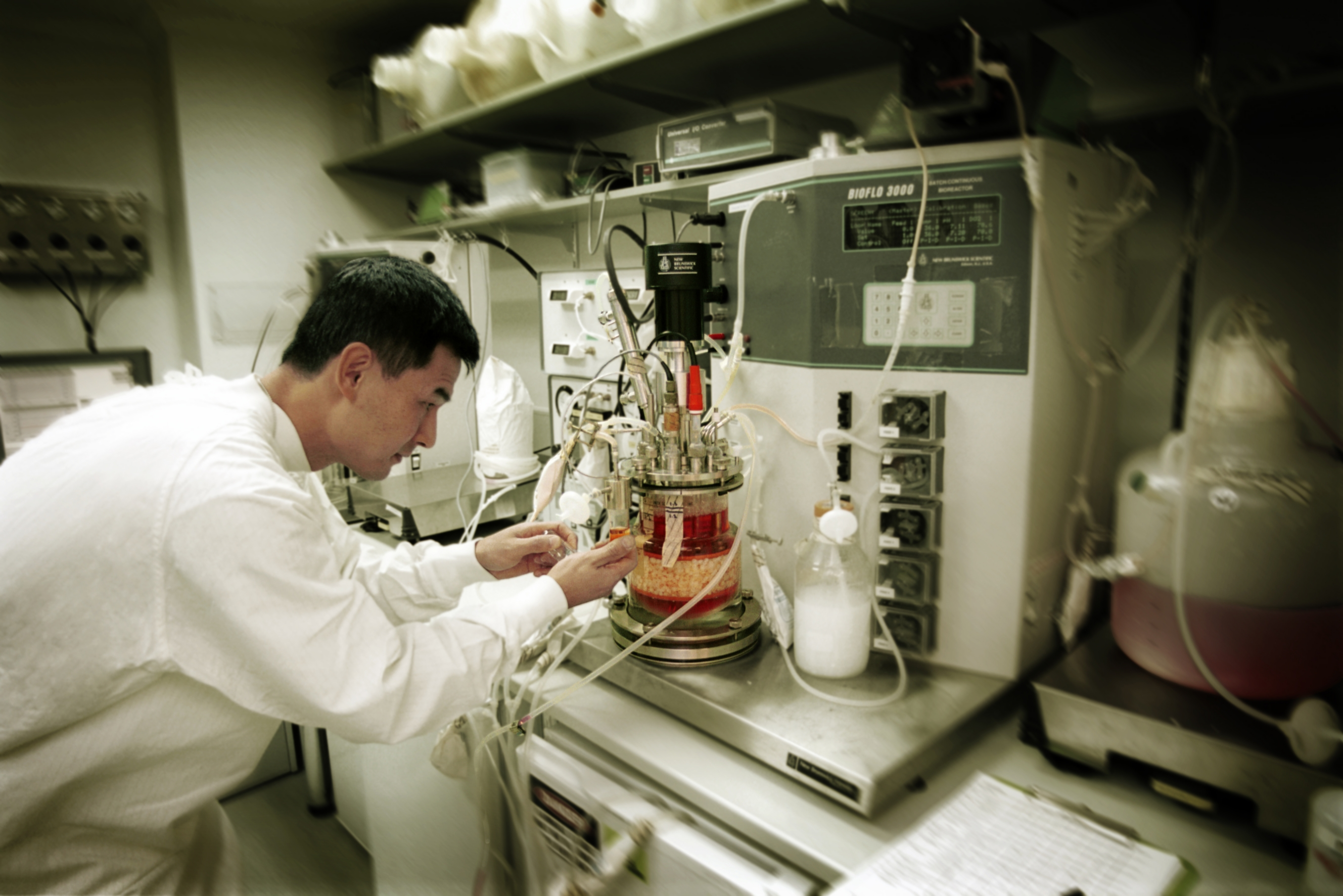 CSIRO scientist, Dr Louis Lu, working in lab on stem cells