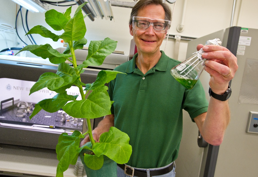 Scientist holding plant and vial of chemical solution.