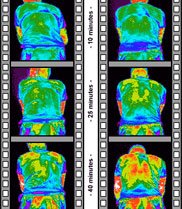 Two thermal imaging film strips of a cyclist back. One wearing the Sportwool™.
