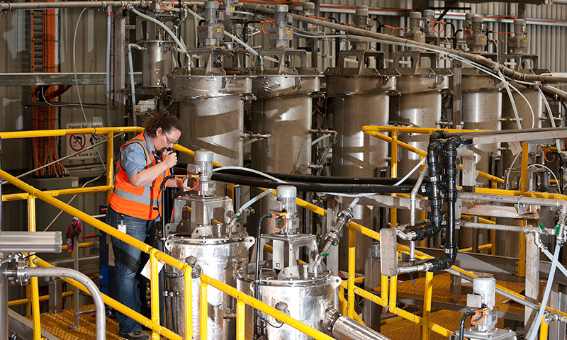Researcher in pilot processing plant