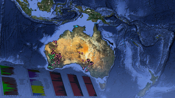Visualisation of Australia showing pin tags on the surface