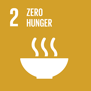 United Nations Sustainable Development Goal 2: Zero Hunger logo