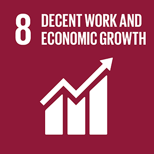 United Nations Sustainable Development Goal 8: Decent Work and Economic Growth logo