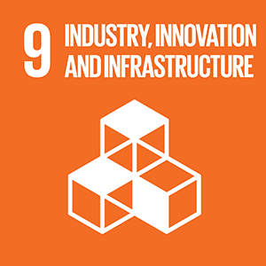 United Nations Sustainable Development Goal 9: Industry, Innovation and Infrastructure logo