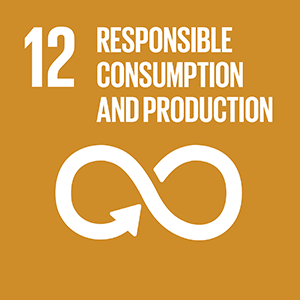 United Nations Sustainable Development Goal 12: Responsible Consumption and Production logo