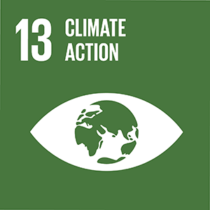 United Nations Sustainable Development Goal 13: Climate Action logo