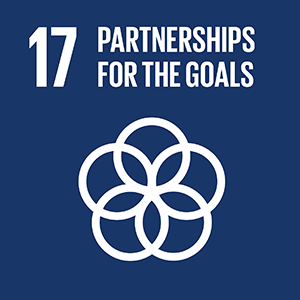 United Nations Sustainable Development Goal 17: Partnerships For The Goals logo