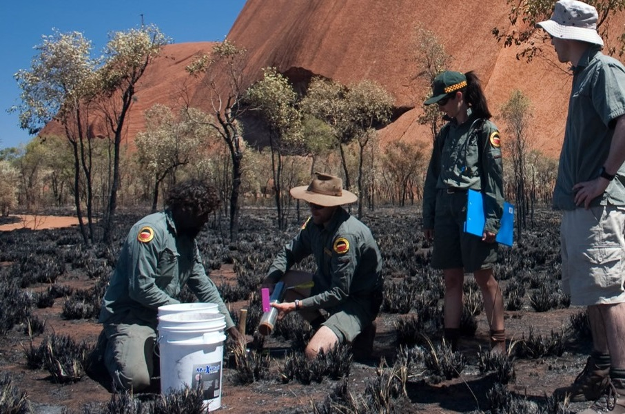 Four people collecting soil samples from a burnt patch of ground at the base of Uluru rock formation