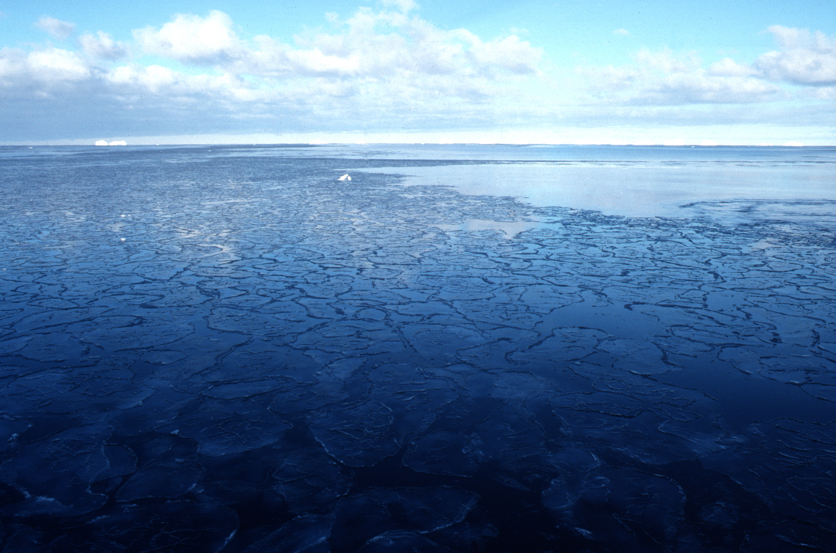 Sea with pancake ice