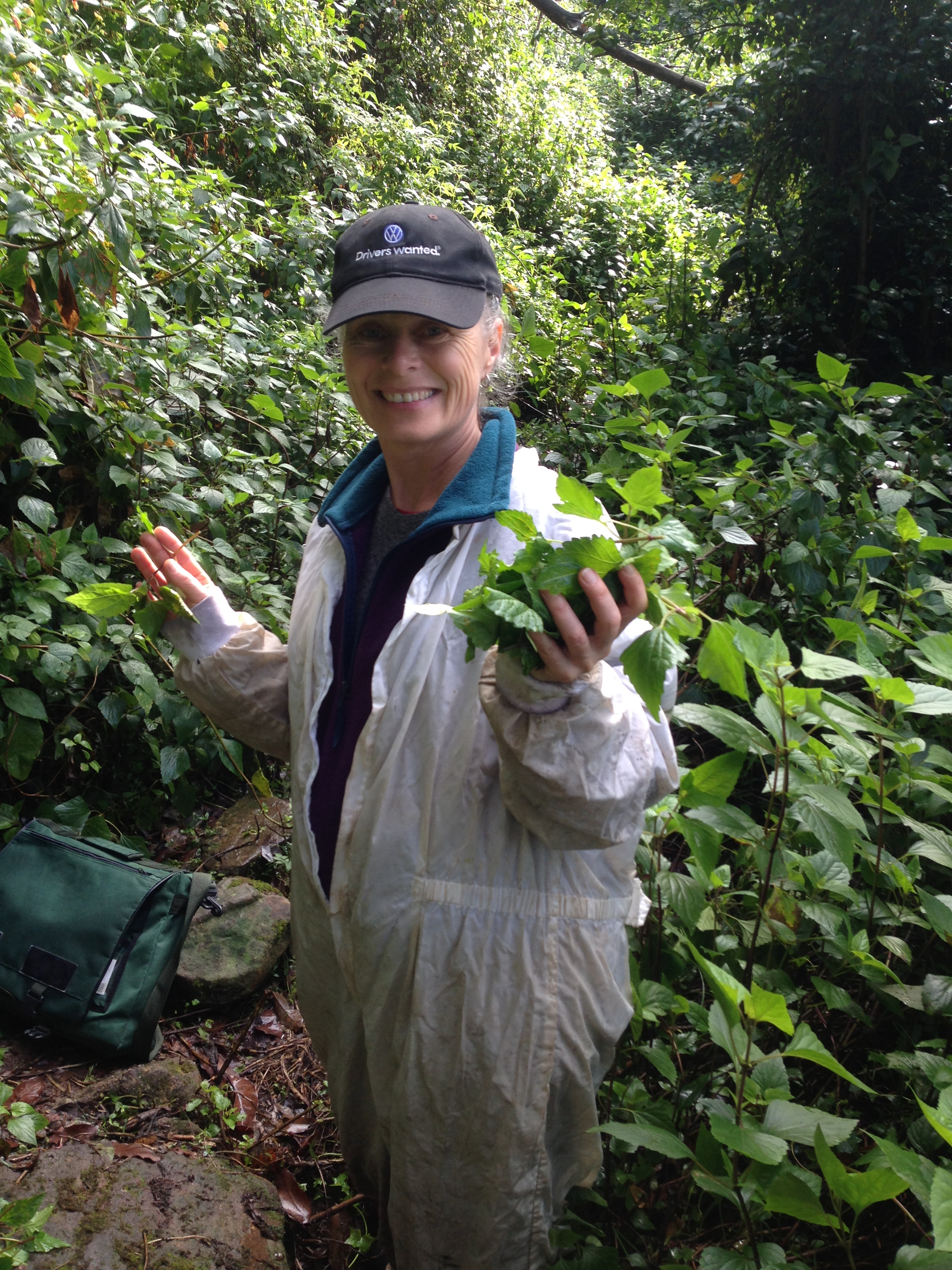 Dr Louise Morin at a rust release site near Wollongong.